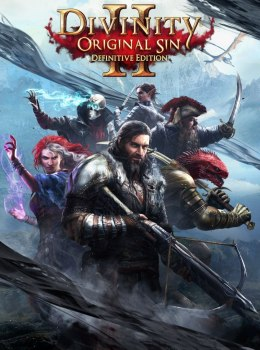 Divinity Original Sin 2 Definitive Edition GOG Kod klucz