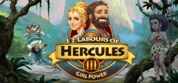 12 Labours of Hercules III Girl Power Steam KOD KLUCZ